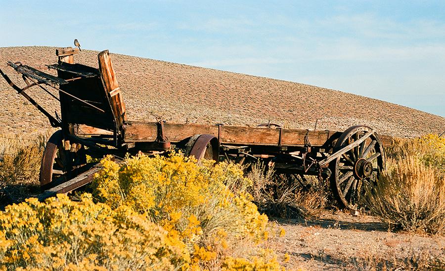 wagon-benton-3xwm.jpg
